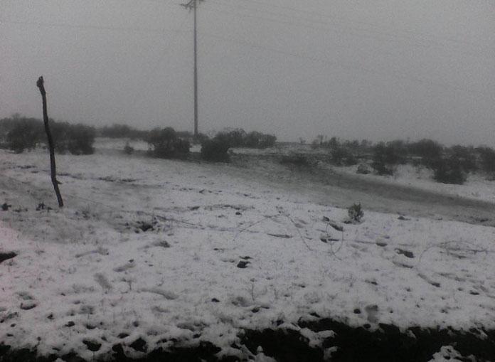 FOTOS Así nev&#24...