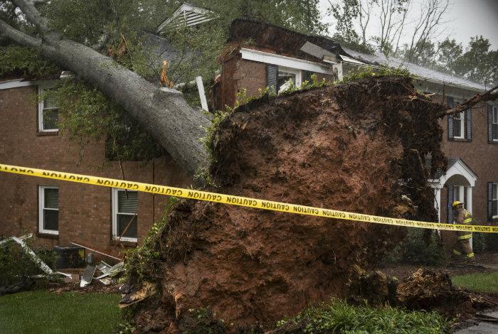 Once personas muertas por el huracán Michael #12Oct