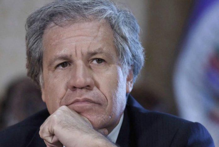 """Luis Almagro dijo que la COVID-19 ayuda al régimen para """"ganar tiempo"""" #6Jun"""